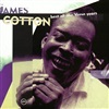 James Cotton - Best of the Verve Years